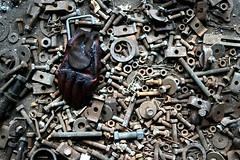 Industrie Morte (ll0zz) Tags: gant friche boulons ecrous