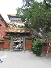 China-0201