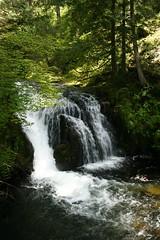 Hint (A Skin For Tomorrow) Tags: nature oregon river portland columbia hike falls gorge multnomah