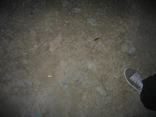 Rifle shells near Edelman's