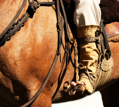 O estribo pampa (Eduardo Amorim) Tags: brazil horses horse southamerica leather brasil criollo caballo cheval caballos cavalos pelotas pferde cavalli cavallo gauchos pferd riograndedosul pampa loro campanha brsil apero chevaux gaucho staffa cuero amricadosul stirrup carona cuir gacho estribo amriquedusud recado gachos couro sudamrica cuoio suramrica amricadelsur sdamerika crioulo pellejo caballoscriollos pelego criollos cabresto pilchas sudadera pilchasgauchas steigbgel costadoce recao cabestro americadelsud botadepotro crioulos cavalocrioulo botadegarro cincha americameridionale botagarrodepotro potrera caballocriollo bajera eduardoamorim cavaloscrioulos estribera estrivo xergo potreira cojinillo trier sobrecincha