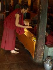 leh-thiksey-140708-097 (Ajay Jain) Tags: travel india tourism buddha buddhism monastery leh himalayas ladakh gompa thiksey