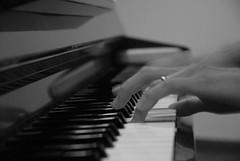 Pianista / Pianist