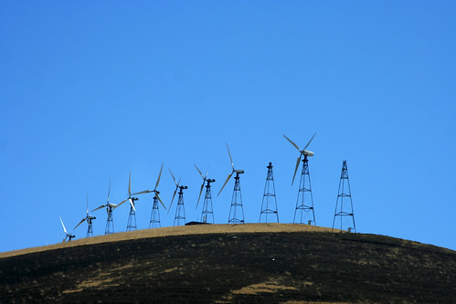 Farming the Wind