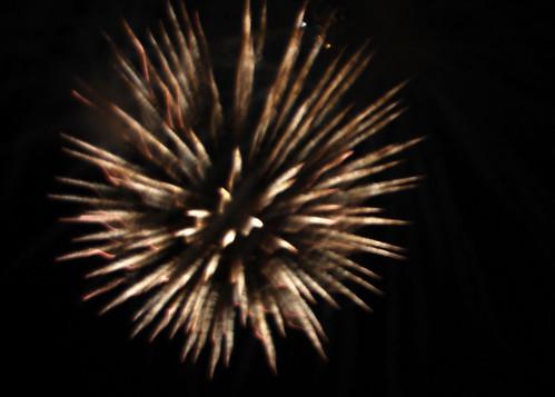 73-Long Beach Fireworks Blossom