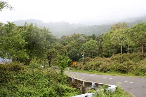 Mistic mountain road, Valparai