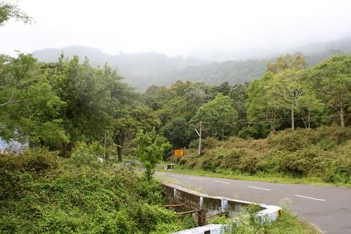Mistic mountain road, Valparai