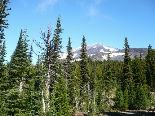 Mt. Adams 4