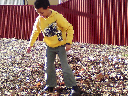 Playing with autumn leaves