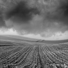 Freedom Of The Fields (Martin Gommel) Tags: camera light sky blackandwhite bw cloud white black cold art nature beautiful beauty field clouds contrast canon germany square landscape deutschland eos freedom blackwhite big europe peace photographer open cloudy feld deep wolken wideangle fields schwarzweiss 2008 baden bruchsal quadrat quadratisch badenwrttemberg badenwuerttemberg bretten kwerfeldein kwadrat martingommel badnerland