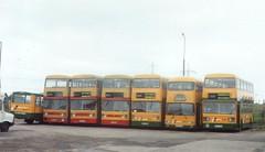 LineUp-01 (Ian R. Simpson) Tags: e178uwf renault s56 reeveburgess southyorkshirestransport noc455r noc454r sda632s noc396r sda533s lms153w leyland fleetline mcw parkroyal alexander ad westmidlandspte midlandscottish western heyshamtravel islecoaches kelvinscottish bus buses minibus mtl depot yard westmidlands wmpte kelvin midland