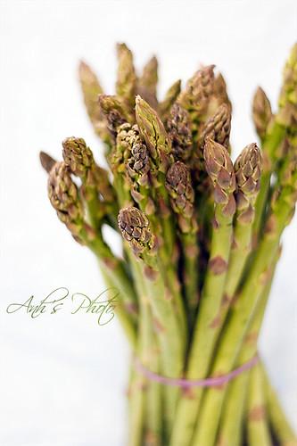 Asparagus Study #3