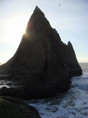 MartinsBeach_2007-019 (Martins Beach, California, United States) Photo