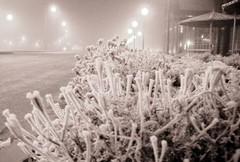 winter is already here (AgusValenz) Tags: winter white blanco ice fog grey gris frozen nikon coolpix invierno neblina kazakhstan hielo congelado p80 казахстан казакстан karabatan