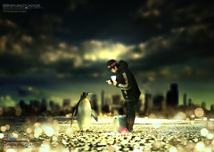 A penguin tourist walked up to me to ask the way. () Tags: street leica light green apple nature birds yellow night digital photoshop wonderful happy penguin design crazy cool aperture pretty bright image sweet gorgeous awesome horizon flash explore vision m8 environment colourful 1001nights telephotolens designers iphone 100f evocative goldstaraward leicacameraagm8 beautifulshot flickrsmasterpieces