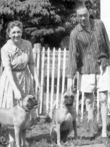 Aunt Anna, Uncle Louis, and those 2 Dravin' Dawgs.jpg