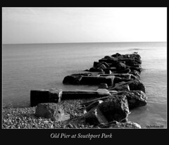Old Pier at Southport Park (cphilruns) Tags: november bird abandoned water pier seagull horizon lakemichigan pilings 2008 kenoshawisconsin southportpark