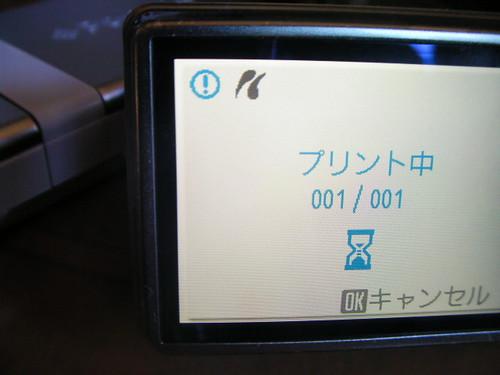 SANY0294