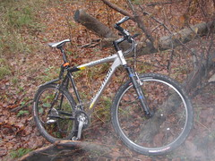 Author Traction with stiff carbon fork