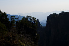 DSC_8020 (Alps Wen) Tags: landscape nikon scene nikkor hunan zhangjiajie d300 wulingyuan 2470 2470mmf28g earthasia worldnatureheritage