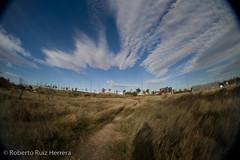 deep in the country (Berts @idar) Tags: calle paisaje zaragoza valdespartera espaa peleng8mmfisheye canoneos400ddigital cieo ojosajenos ojosajenoscom