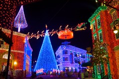 Disney's Hollywood Studios - The Osborne Family Spectale of Lights (Matt Pasant) Tags: christmas longexposure night lights orlando florida christmastree christmaslights hollywood mickeymouse orangecounty dhs mgmstudios osborne waltdisney osbornelights streetsofamerica canonef1635mmf28liiusm canon40d disneyshollywoodstudios jenningsosborne disneyphotochallengewinner lakebeunavista dhsdisneys