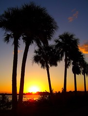 Florida..Last Sunrise of Vacation (Farley&RussInFlorida) Tags: 1001nights outofthisworld goldenhour brothersunsistermoon thisphotorocks peaceawards natureselegantshots doubledragonawards photographerparadise naturesgreenstar platinumpeaceawards goldenplanet keepyoureyesopenayezloeil naturesbeautifulpictures fabulousplanetgold