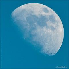 Manual Focus Moon (Peterbijkerk.eu Photography) Tags: moon netherlands nikon nh manualfocus bluemoon d300 heiloo maan nld peterbijkerk compumesseu peterbijkerkeu beroflex500mmf8