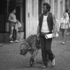Wolfhound (Fouquier ) Tags: blackandwhite bw white black mono streetlife irishwolfhound hoogstraat gazetvanantwerpen canonef85mmf12liiusm canoneos5dmkii