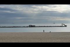 Barcelona _ 1039 (@2008) Tags: barcelona poblenou a900 sal85f14z sal85f14za