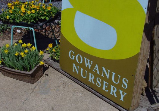 Gowanus Nursery One
