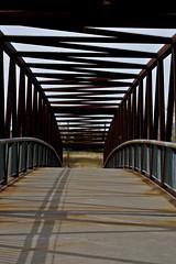 The Bridge (Manincognito) Tags: bridge calgary canon rebel alberta bowriver fishcreekpark xti