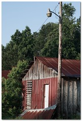 (Mr. Greenjeans) Tags: old rural louisiana neglected rusty thesouth roadside lightpole tinroof mrgreenjeans gaylon oldshed gaylonkeeling