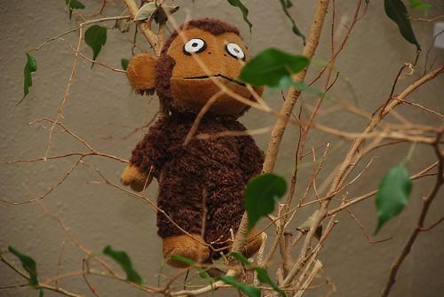 Anxiety Monkey