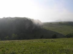 20 утро туманное2