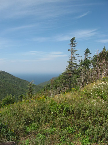 Vista, Cabot Trail