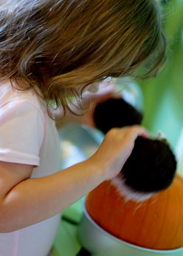v cupcake pumpkin pie ballerina 081
