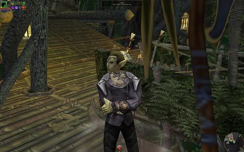 Male Elf