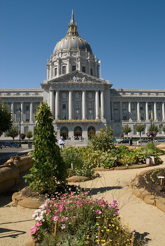 San Francisco City Hall Victory Garden