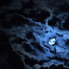 Goodbye Theodore (Just Add Light) Tags: moon backlight night clouds cat bright goodbye theodore gnas illmissyou justaddlight wnight