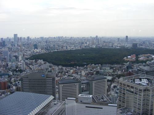 2008_1012shinjuku0079