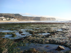 MartinsBeach_2007-066 (Martins Beach, California, United States) Photo