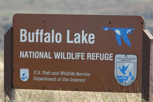 Buffalo Lake Sign
