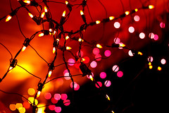 Web of Lights (Kirpernicus) Tags: pink light orange abstract color colour halloween night fun 50mm lights colorful dof bokeh f14 eyecandy canonef50mmf14usm bokehlicious bokehabstract wowiekazowie novavitanewlife