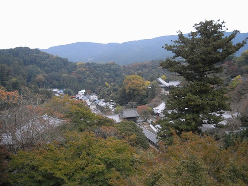長谷寺(特別拝観)-18