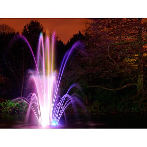 Enchanted Woodland, Syon Park