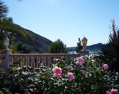 View from Bella Orcheta over the Embalse (Ginas Pics) Tags: pink flowers blue sea roses vacation sky fish color nature rose landscape interestingness interesting fishing spain holidays colorful rosa ole espana getty extra extraordinary benidorm embalse ethnography costablanca exceptional travelphotography ginaspics explored 100commentgroup gettyvacation2013 gettyholidays2013