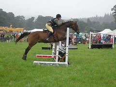 arran show 2008 036