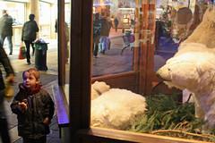 (bellesaison) Tags: france bears polar thionville