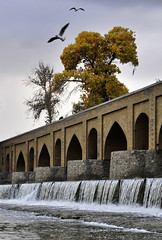 (Alieh) Tags: bridge blue bird water architecture river persian iran cloudy gull persia automn rainy iranian  esfahan isfahan    zayandehrood aliehs alieh         saadatpour marnunbridge